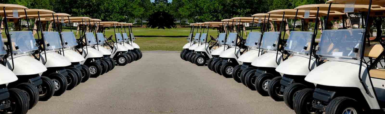 Best Golf Cart Batteries Reviews [2021] – Recommended by Experts